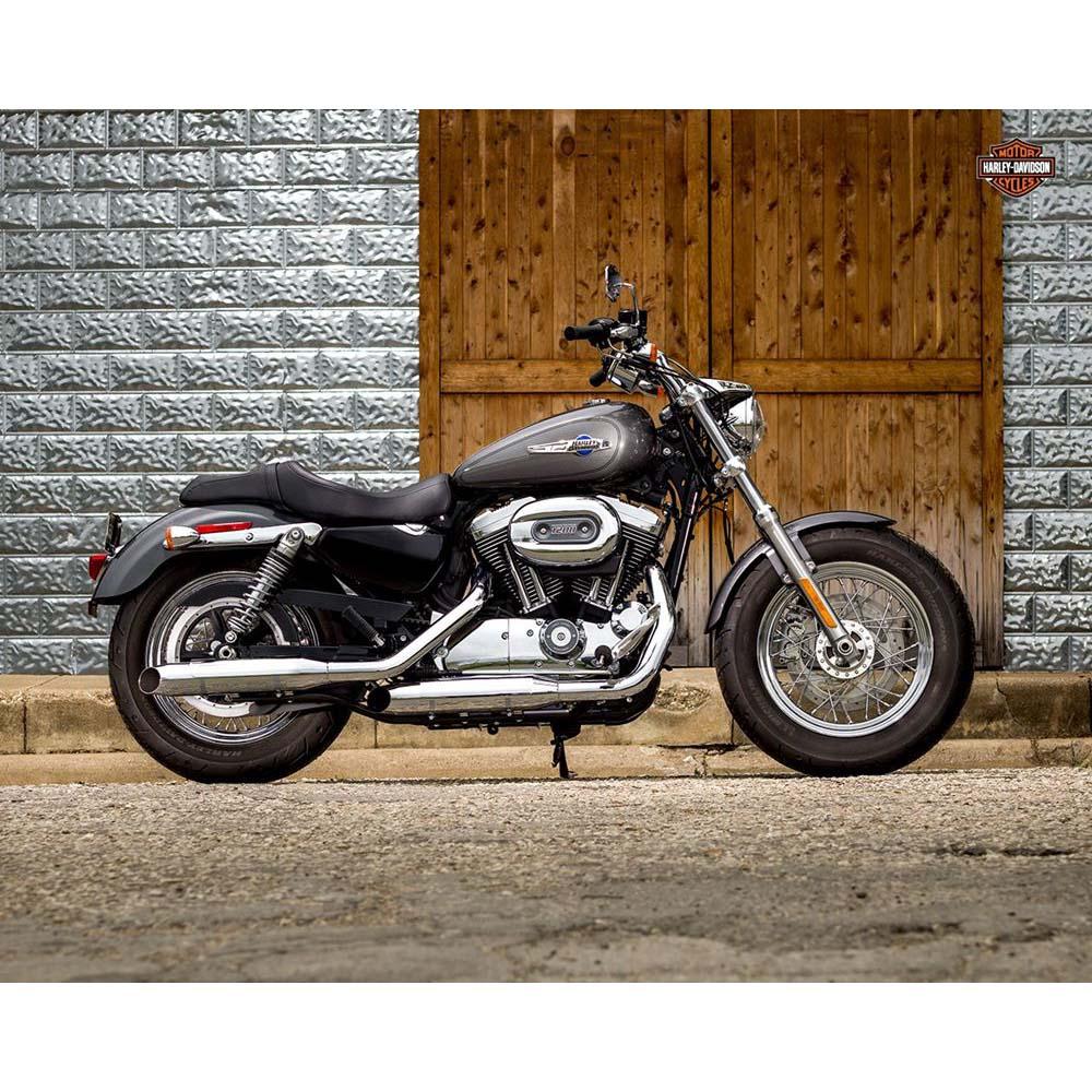 B03 Sportster 1200 Custom 2016 _ Harley-Davidson Parma