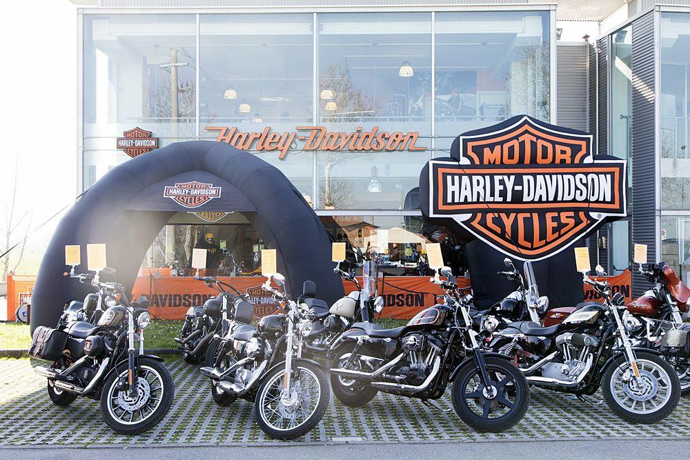 IMG_8163_Harley Davidson Parma