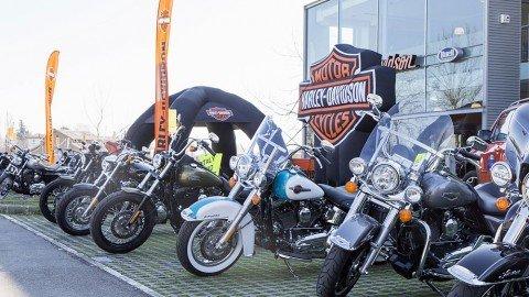IMG_8170_Harley Davidson Parma