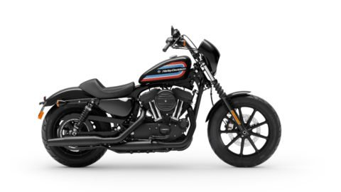 MY20 XL1200NS Iron 1200. Sportster. INTERNATIONAL ONLY